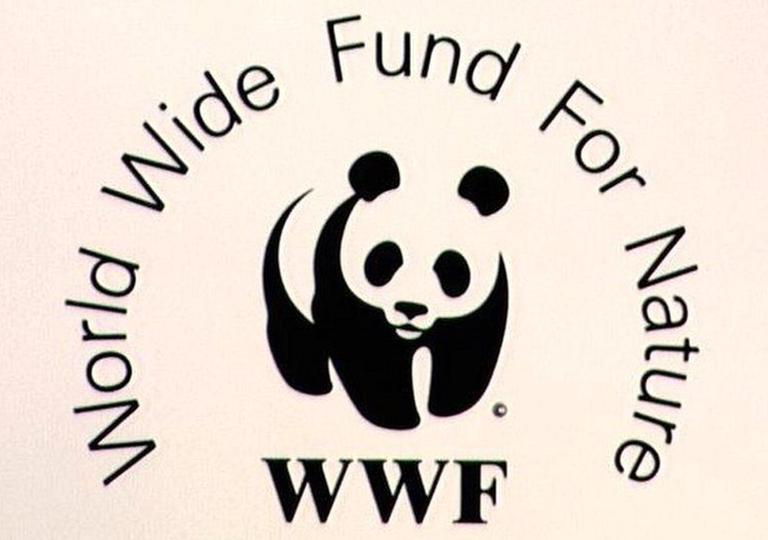 """WWF отвара конкурс """"Млади против климатских промена"""""""